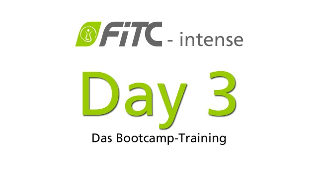 30 Day Challengen - FiTC intense Bootcamp Training Tag 3