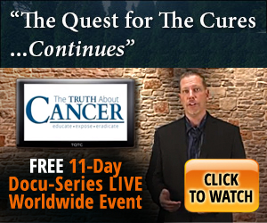 The Quest for the Cure continues