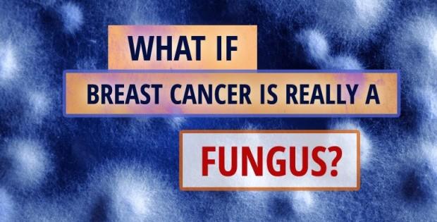 Cancer-Fungus-620x330